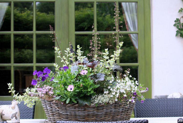 Fonds d 39 cran nature fonds d 39 cran fleurs le jardin romantique de dina deferme par tricotine for Ecran de jardin belgique