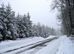 Nature route traversant une forêt enneigée
