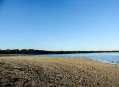 Nature Ile d'Oléron