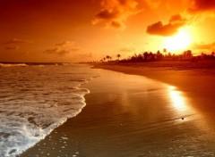 Nature amazing sunrise at the beach