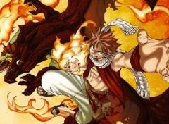 Manga Natsu / Fairy Tail
