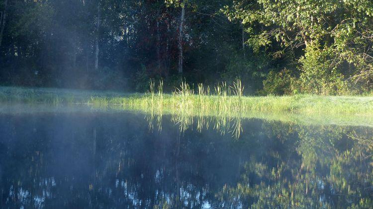 Wallpapers Nature Lakes - Ponds Brumes matinales