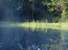 Nature Brumes matinales