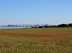 Constructions and architecture pont de l'île de ré