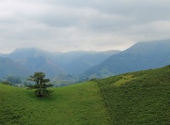 Nature pays basque
