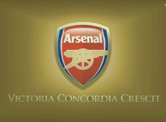Sports - Loisirs Arsenal FC