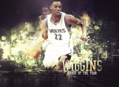 Sports - Leisures Andrew Wiggins