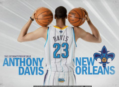 Sports - Loisirs Anthony Davis