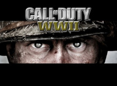 Video Games COD:WW2
