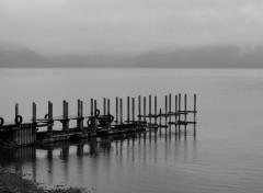 Nature Le lac