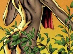 Fonds d'écran Comics et BDs Image sans titre N°47628