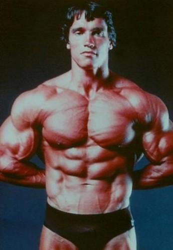 Fonds d'écran Célébrités Homme Arnold Schwarzenegger Wallpaper N°54126