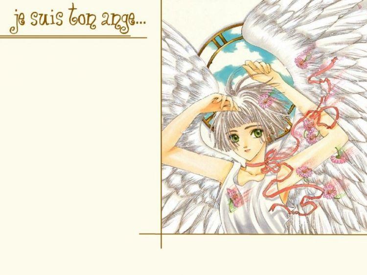 Fonds d'écran Manga Clover Wallpaper N°48724
