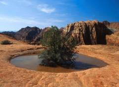 Fonds d'écran Nature Image sans titre N°40051