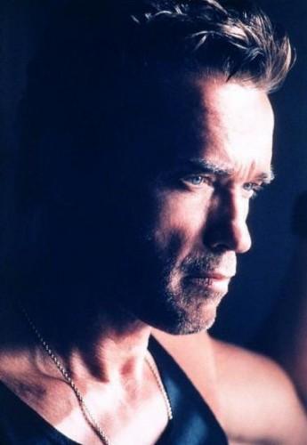 Fonds d'écran Célébrités Homme Arnold Schwarzenegger Wallpaper N°54132