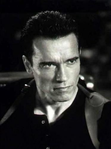 Fonds d'écran Célébrités Homme Arnold Schwarzenegger Wallpaper N°54128