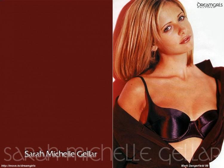 Fonds d'écran Célébrités Femme Sarah Michelle Gellar Wallpaper N°57907