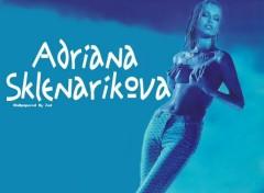Fonds d'écran Célébrités Femme Adriana On Blue
