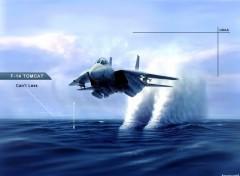Fonds d'écran Avions F14-Tomcat