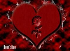Fonds d'écran Art - Numérique Heart's Rose