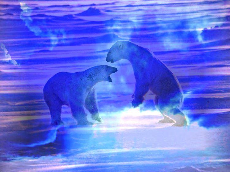 Fonds d'écran Art - Numérique Animaux Ice 2