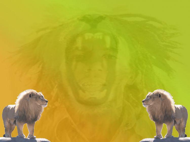 Fonds d'écran Musique Bob Marley Bob the Lion