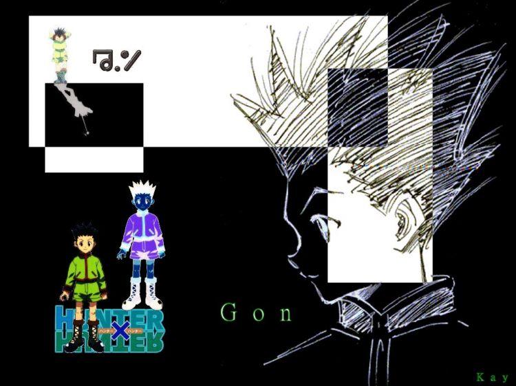 Fonds d'écran Manga Hunter x Hunter Gon
