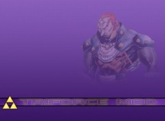 Wallpapers Video Games Gannondorf