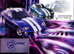 Wallpapers Sports - Leisures Viper