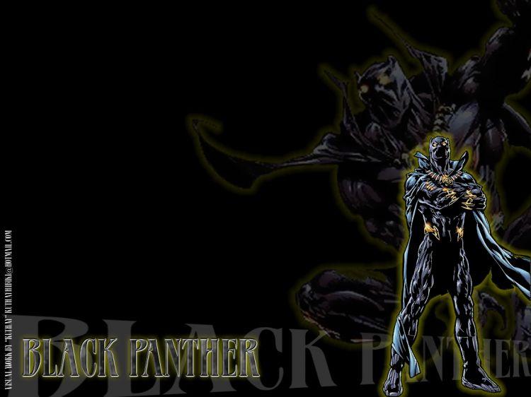 Fonds d'écran Comics et BDs Black Panther Ruthay Black Panther 01