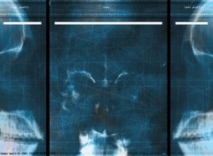 Fonds d'écran Art - Numérique Skull