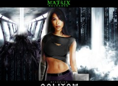 Wallpapers Movies la belle aaliyah