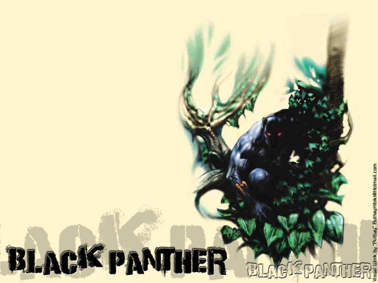 Fonds d'écran Comics et BDs Black Panther Ruthay Black Panther 02