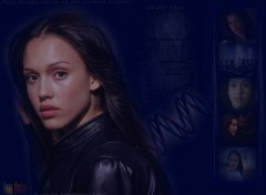 Fonds d'écran Séries TV Dark Angel 032