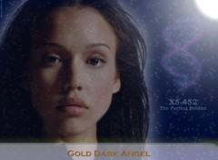 Fonds d'écran Séries TV Dark Angel 014