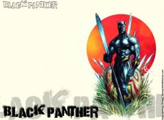 Wallpapers Comics Ruthay Black Panther 03