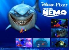 Fonds d'écran Dessins Animés Finding NEMO