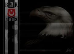 Wallpapers Sports - Leisures besiktas  turkish team