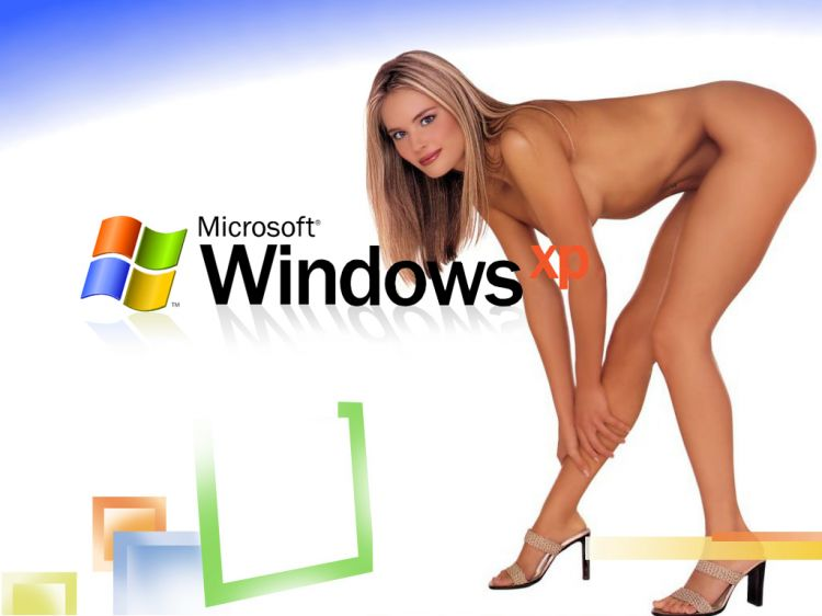 Fonds d'écran Informatique Windows XP Windows XP Classic