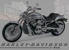 Fonds d'écran Motos Harley