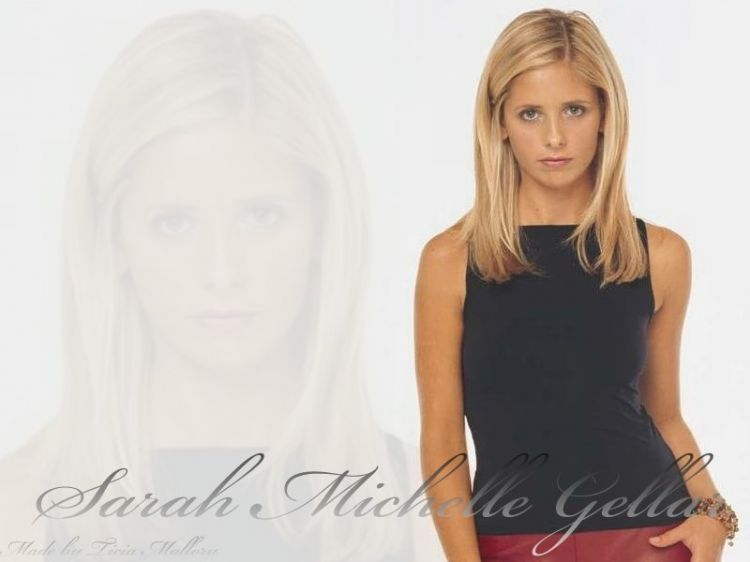 Wallpapers Celebrities Women Sarah Michelle Gellar Wallpaper N°23765