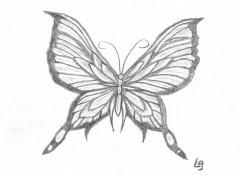 Fonds d'écran Art - Crayon papillon