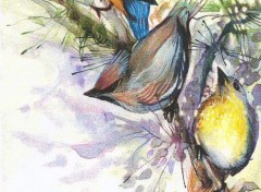 Wallpapers Art - Pencil oiseaux