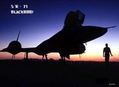Fonds d'écran Avions SR 71 Blackbird