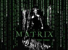 Fonds d'écran Cinéma The Matrix