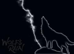 Fonds d'écran Manga wolfs rain