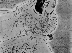 Fonds d'écran Manga gally mariage