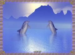 Wallpapers Animals 2 Dauphins