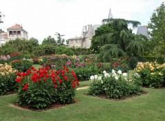 Fonds d'écran Nature Jardin thabor a Rennes