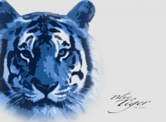 Fonds d'écran Animaux Blue Tiger